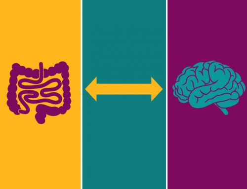 *** Blog** How On Earth Does the Gut Communicate with the Brain?